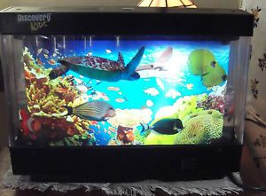 Discovery Kids Aquarium Lamp 1000 Aquarium Ideas