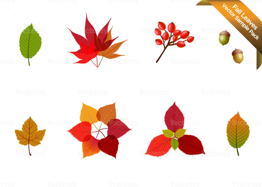 Falling Leaves Wallpaper Free Download Fall Leaves Sample Vector Pack By Vecteezy On Deviantart