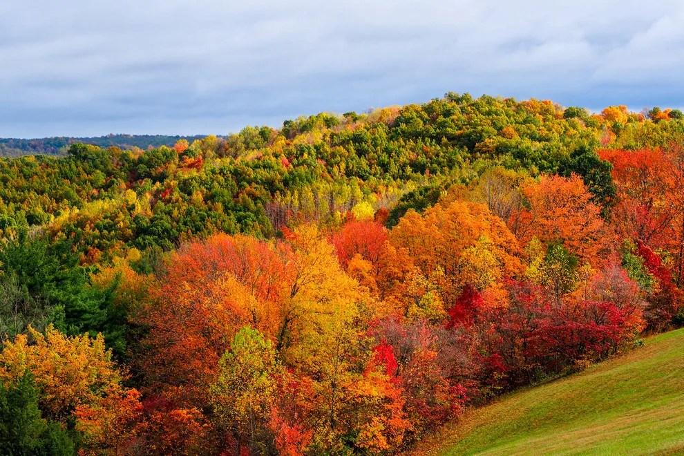 American Wallpaper Fall River Ma Best Scenic Autumn Drive Winners 2015 10best Readers