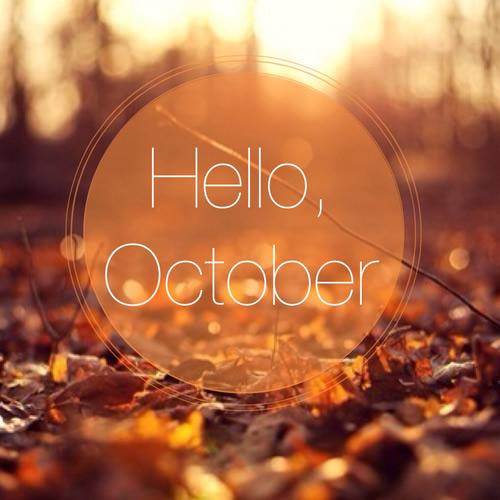Fall Wallpaper With Pumpkins ᐅ 18 Octobre Images Photos Et Illustrations Pour Facebook