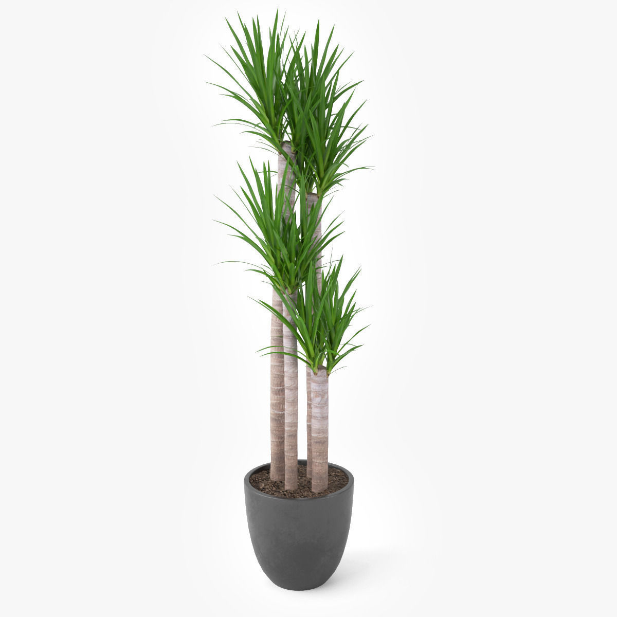 Artificial Areca Palm Tree Potted Plants Artificial Chrysalidocarpus Lutescens Bonsai Synthetic Indoor Coconut Tree Buy Artificial Chrysalidocarpus Palm Potted Plant Garden Design Ideas