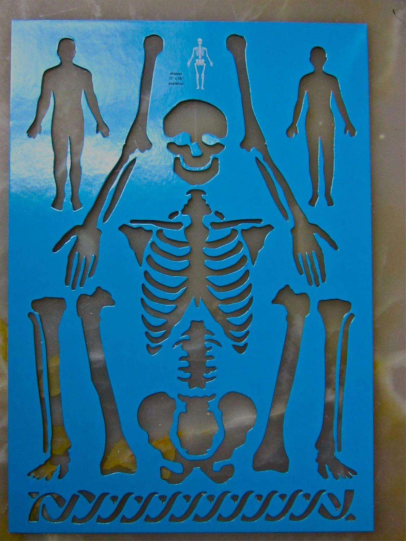 human body stencil