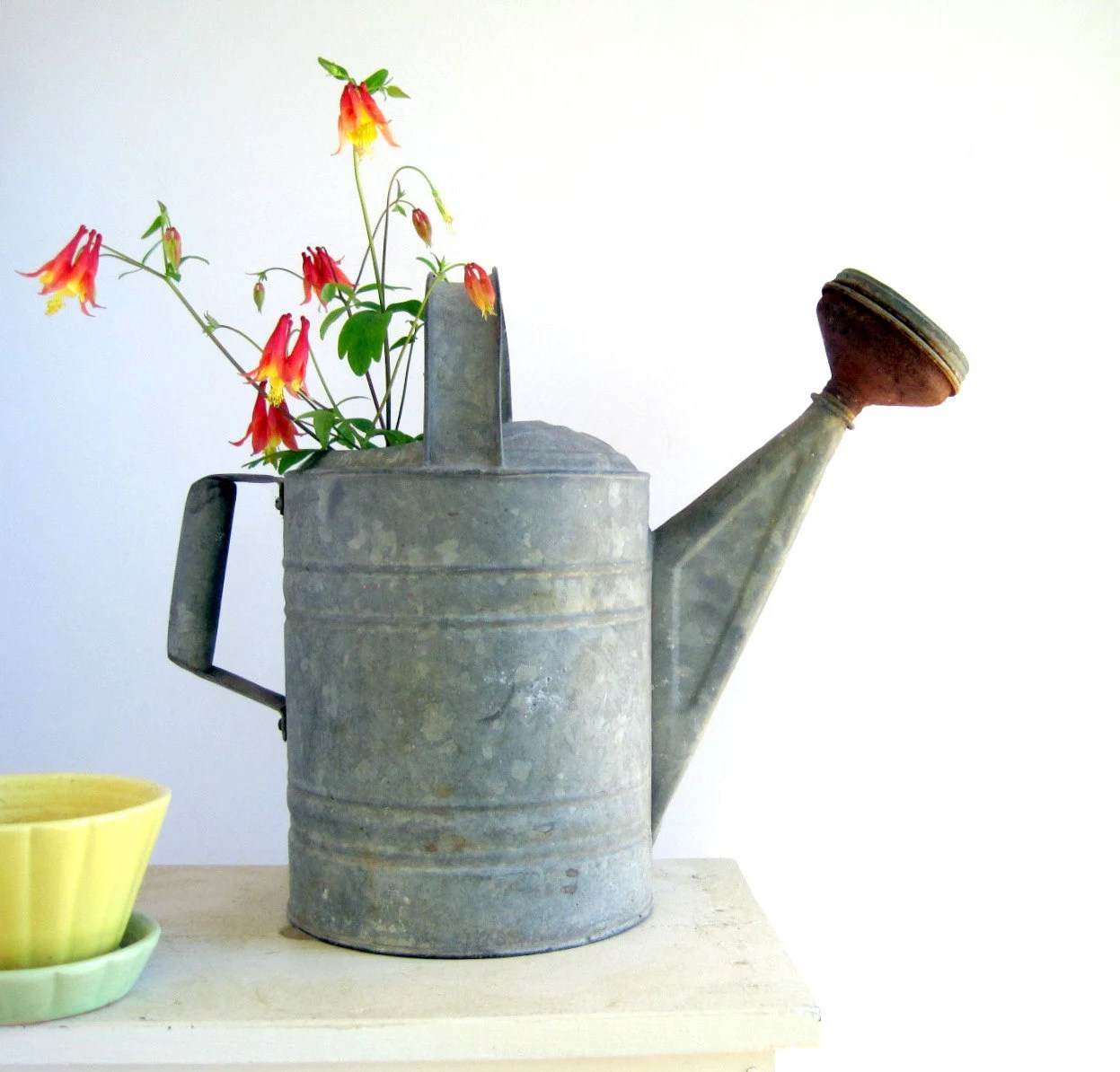 Metal Indoor Watering Can Vintage Galvanized Metal Watering Can With Spout