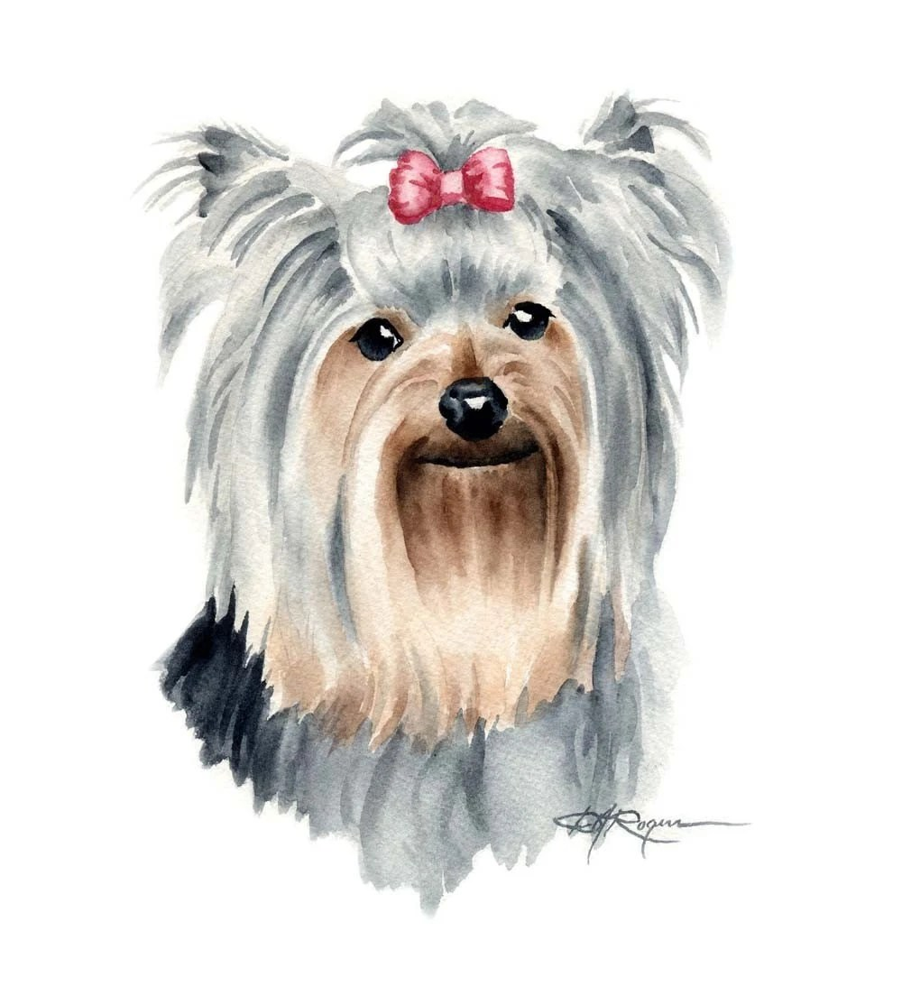 Cute Fluffy Dogs Wallpaper Yorkshire Terrier Dog Watercolor Painting Art By K9artgallery
