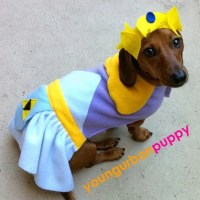 Princess Zelda from Nintendo Dog Costume