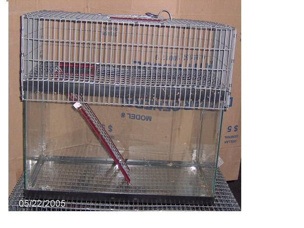 20L 1 Story Aquarium Cage Tank Topper gerbil rat by magnumpie
