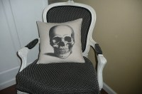 Skull Pillow Cover