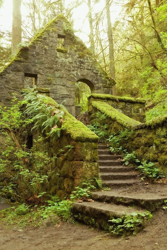 The Stone House Forest Park Portland Oregon Fine Art Photo