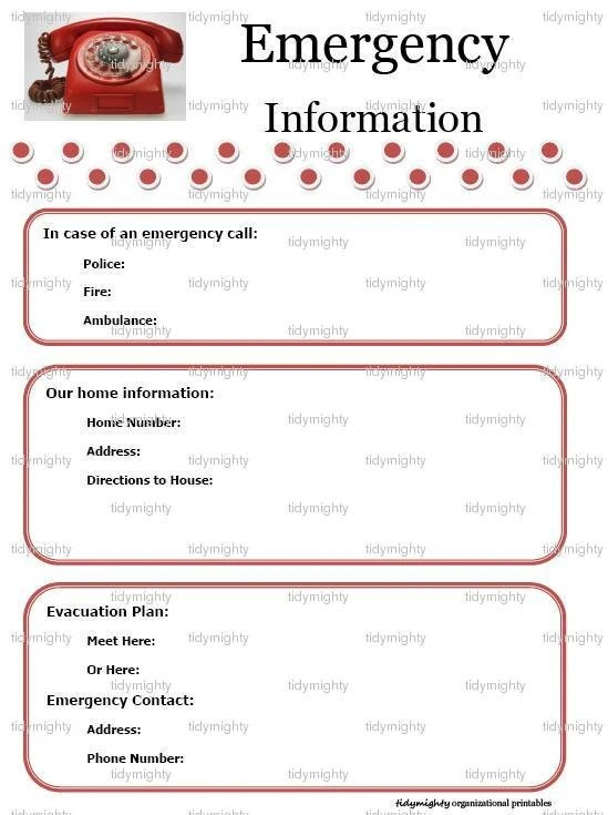 Emergency Contact Information Template. doc 12751650 employee ...