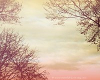 Items similar to Pink Sky Fine Art Photo - Abstract Wall ...