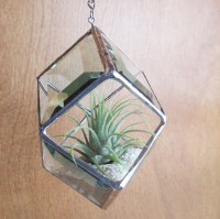 Stained Glass Beveled Hanging Planter for Air Plants or Home