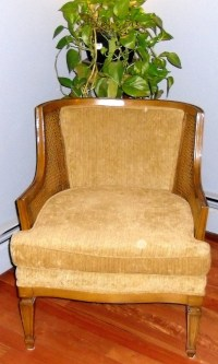 Mid Century Cane Chair Vintage Mid Century Barrel Chair