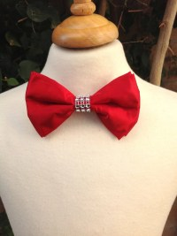 Boys bow tie Red Bow tie Embellished bow ties bow ties