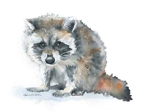 Cute Wedding Cartoon Wallpaper Raccoon Watercolor Painting Giclee Print 10 X 8 Nursery Art