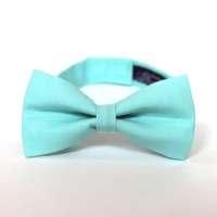 Boy's Bow Tie Fresh Mint Inspired by J.Crew any size