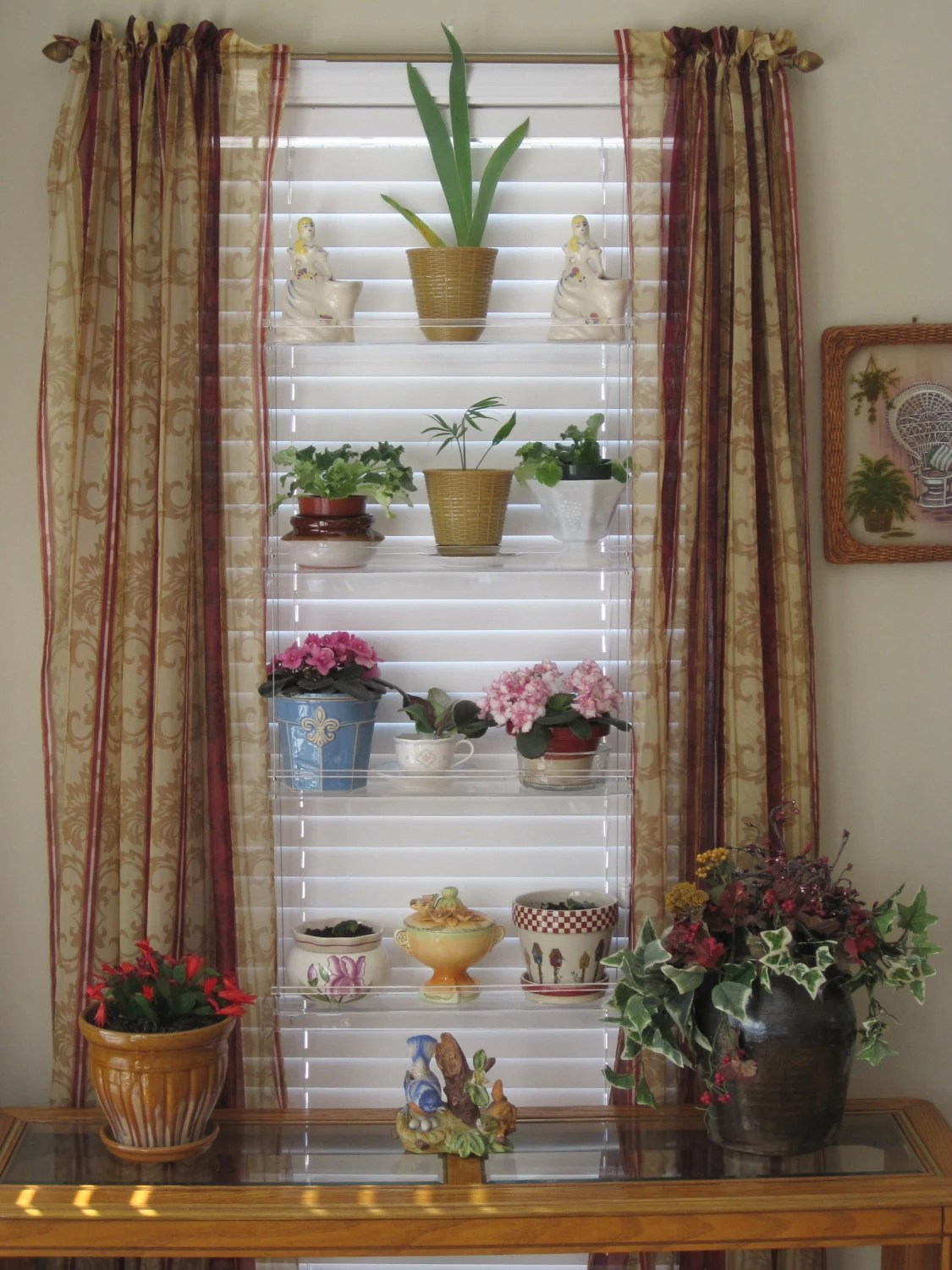 Plant Shelving Indoor Standard 20 Hanging Window Plant Shelves Create Your