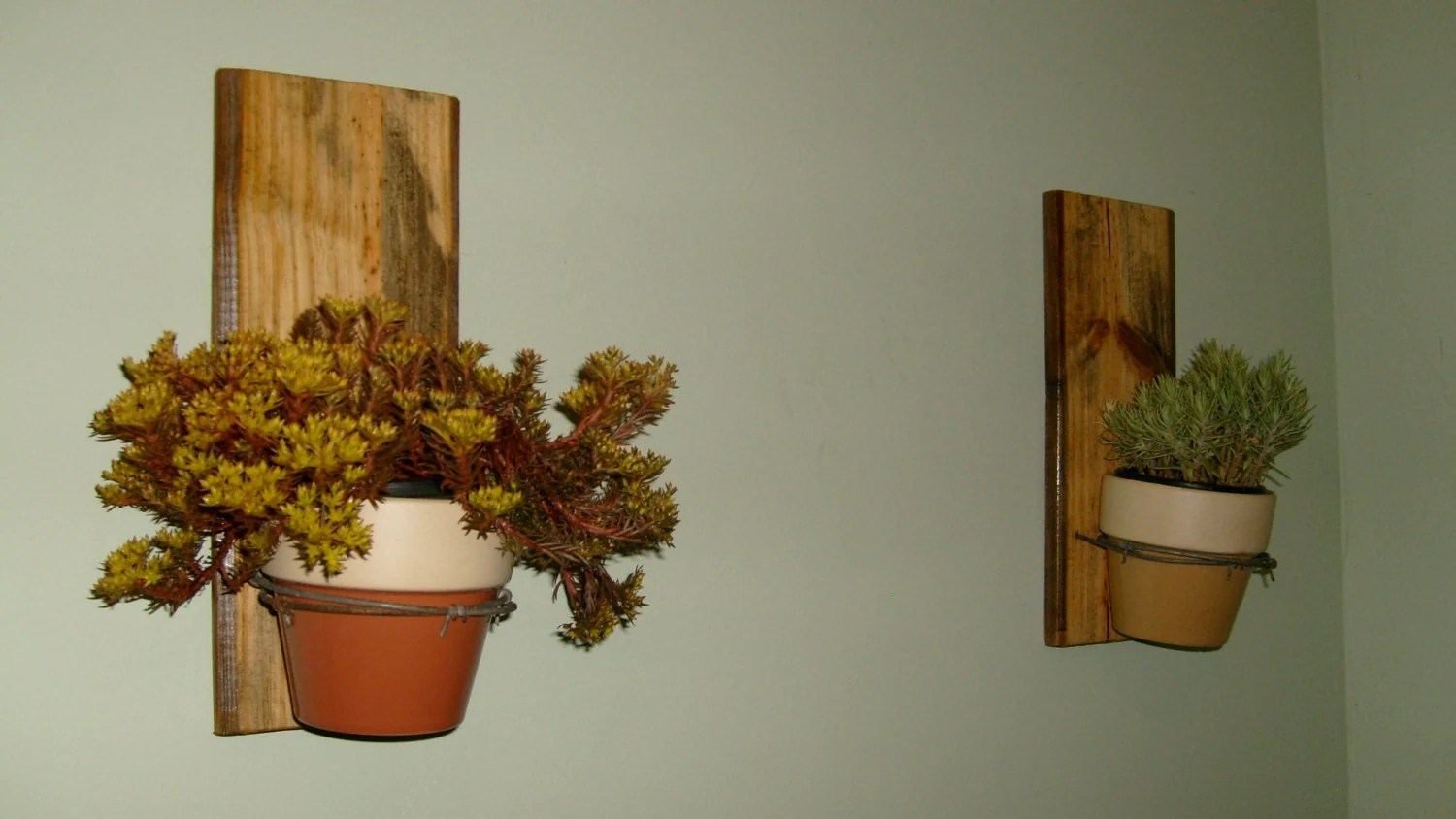 Wall Mounted Plant Holders Wall Hanging Plant Holders On Reclaimed Wood