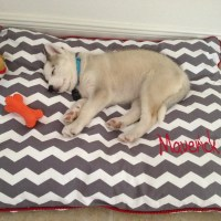 Personalized Dog Bed Cover