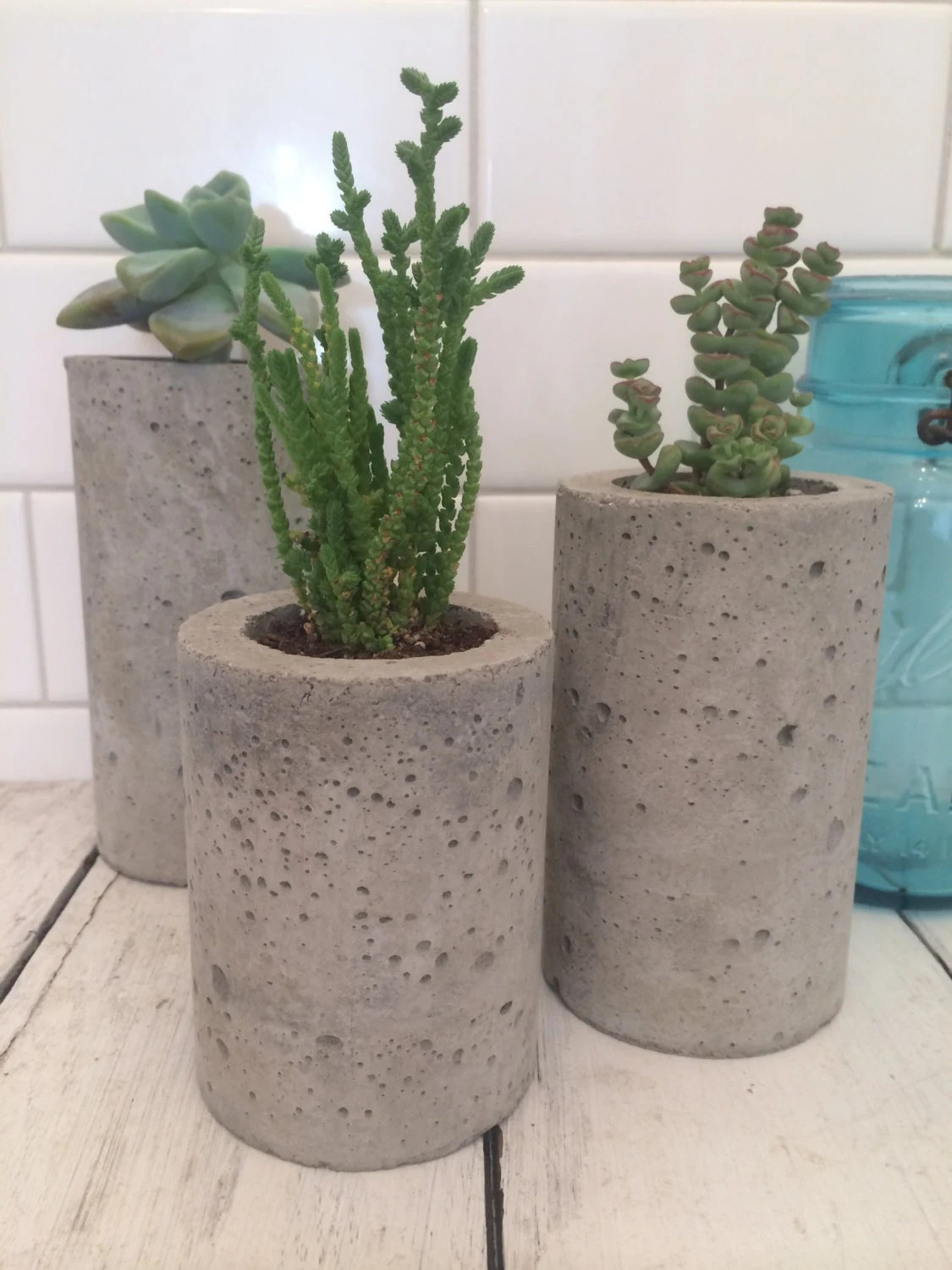 Succulent Planters Wholesale Concrete Succulent Planters Urba Planters Set Of 3 By
