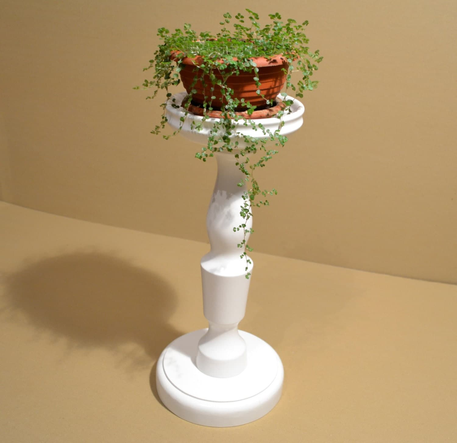 White Pedestal Plant Stands White Fern Stand Plant Stand Wood Pedestal Table Wooden