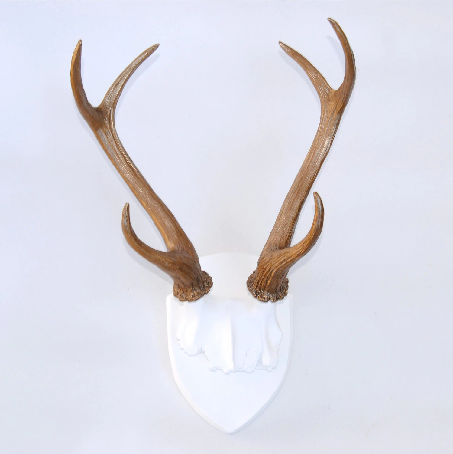 Fake Deer Skull And Antlers Large Faux Taxidermy Deer Antler Mount White Plaque With