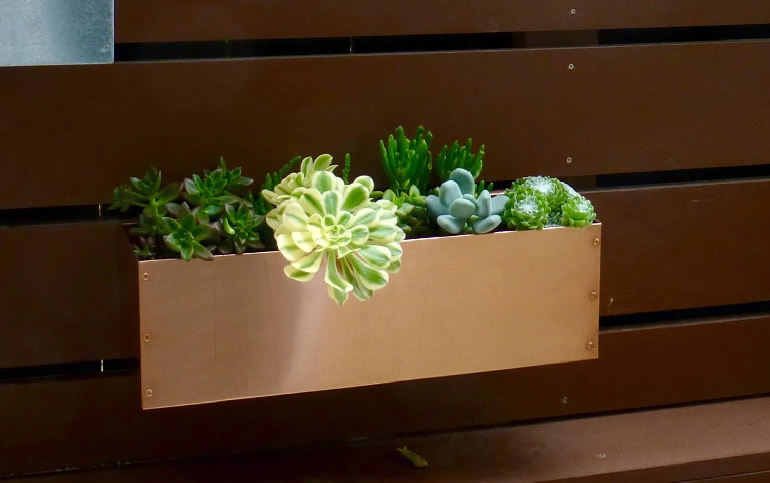 Copper Hanging Planter Box Horizontal Fence By Metrogardens