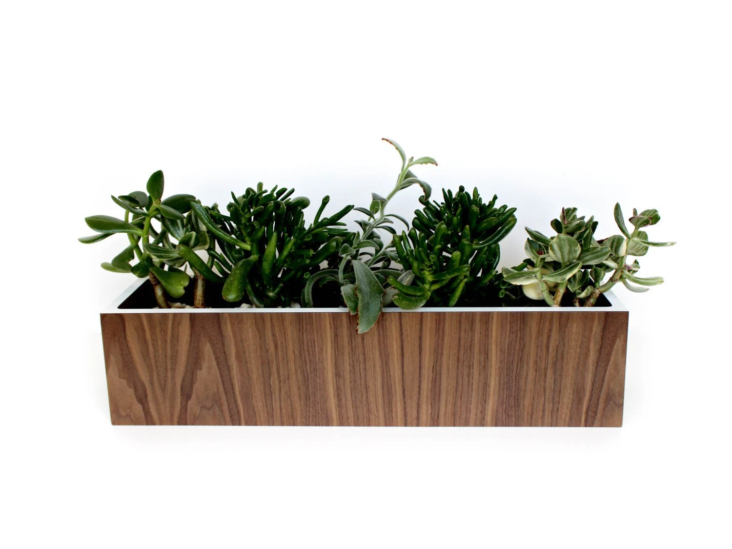 Large Wall Mounted Planters Walnut Planter Large Wall Hanging Or Tabletop Style Walnut