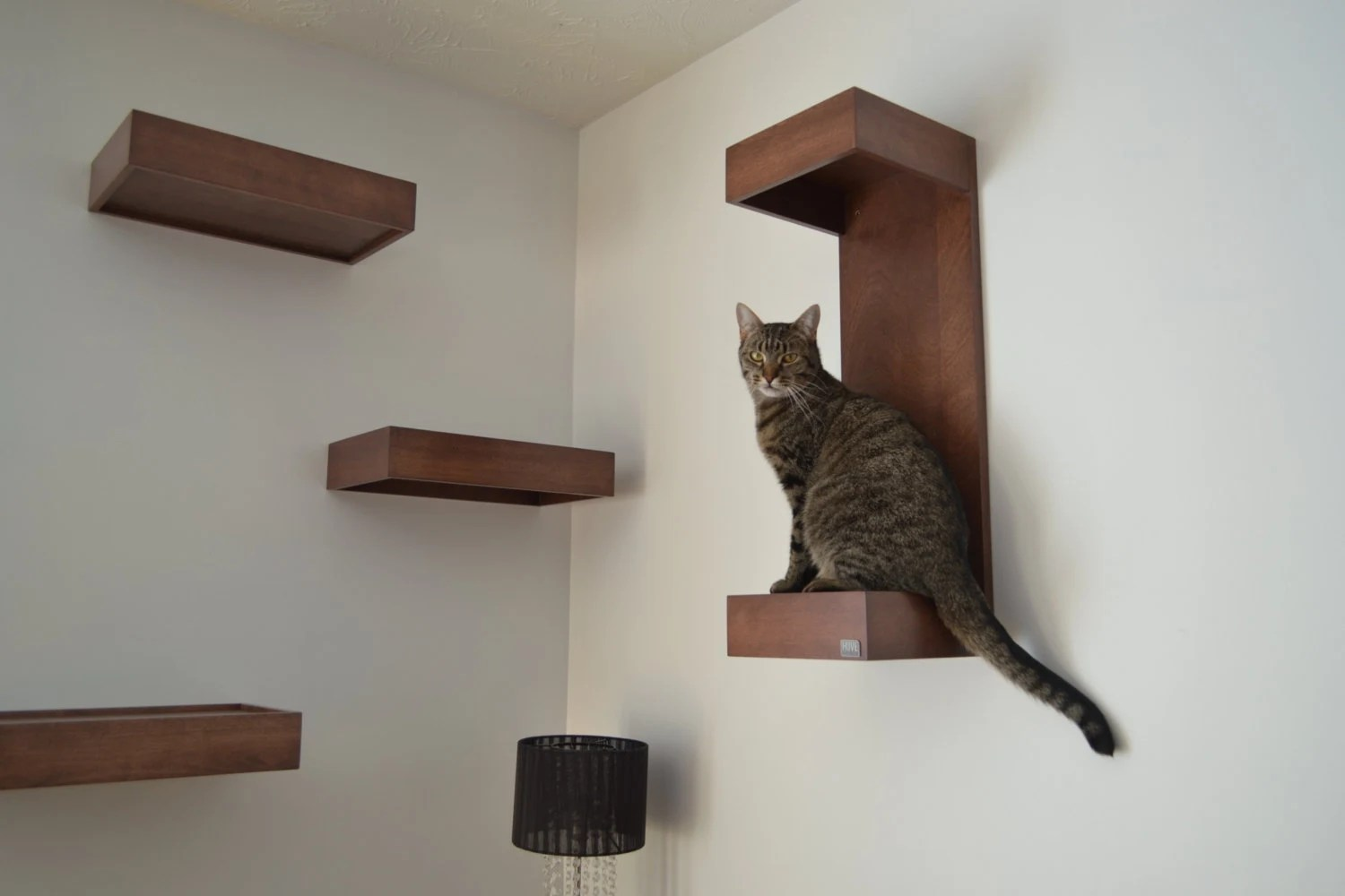 Modern Cat Shelves Cat Wall Shelf Cat Wall Perch Package Of Three By Huve