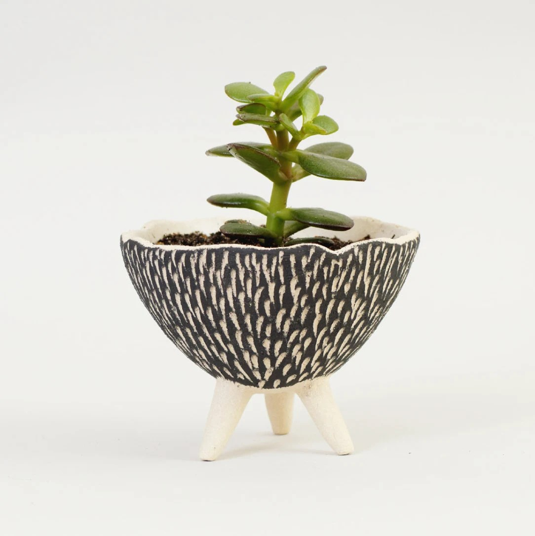 Ceramic Pottery For Plants Black And White Pottery Planter Textured Ceramics Ceramic