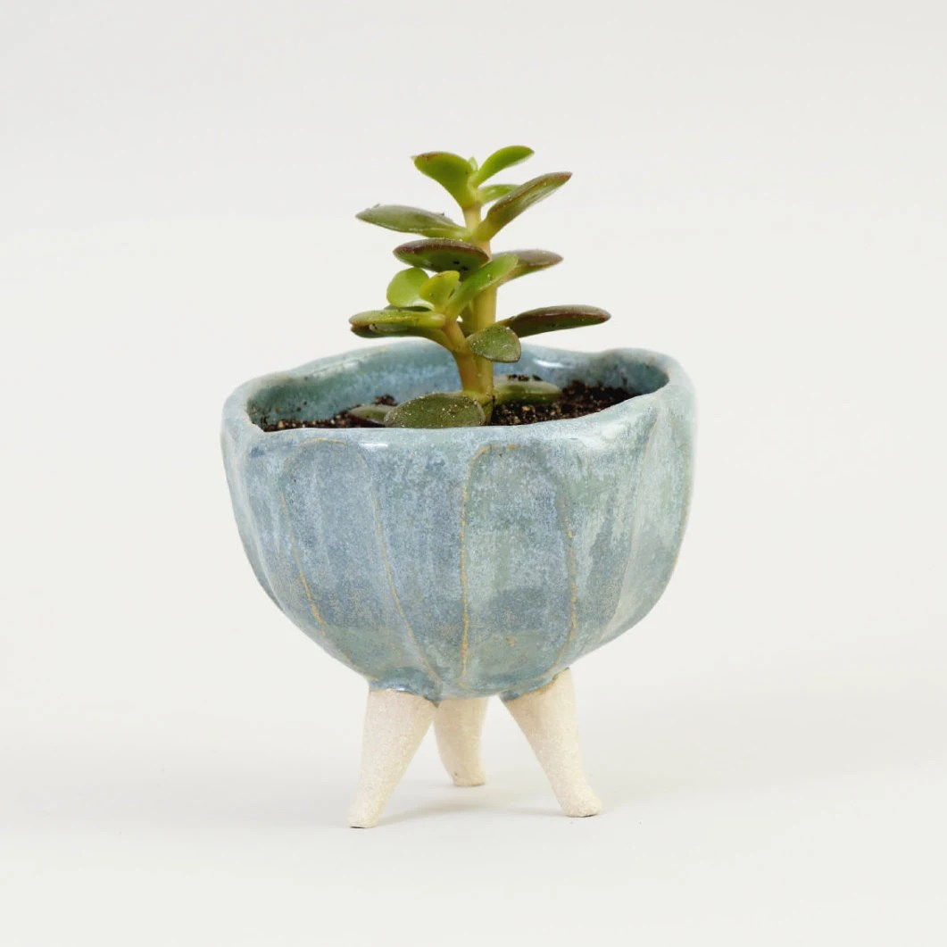 Ceramic Pottery For Plants Turquoise Blue Pottery Planter Ceramic Planter Ceramic Plant