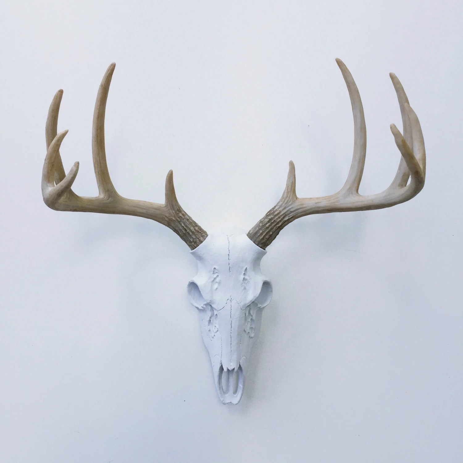 Fake Deer Skull And Antlers Any Color Realistic Deer Skull Wall Mount Fake Deer Antlers