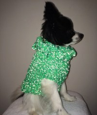 Small dog sweater puppy sweater Reflective dog sweater
