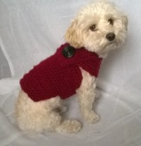 red dog sweater yorkie sweater dog sweater small small dog