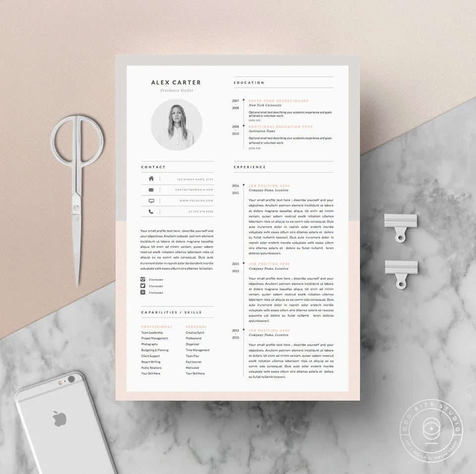 template cv portfolio indesign