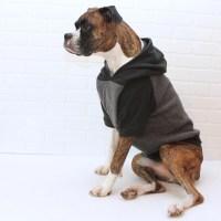 Premium Dog Apparel for the Refined Mutt by BullenbeisserDog