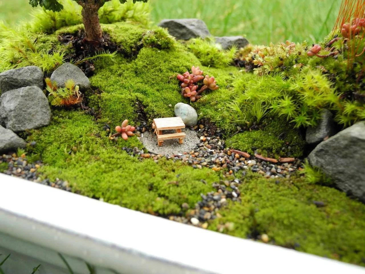 Fullsize Of Natural Fairy Garden