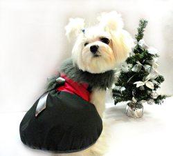 Small Of Dog Winter Coat