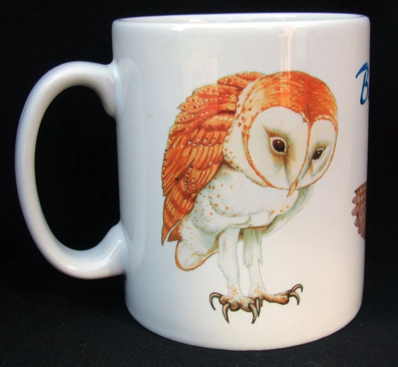 Owl Ceramic Mug Barn Owl Ceramic Mugs