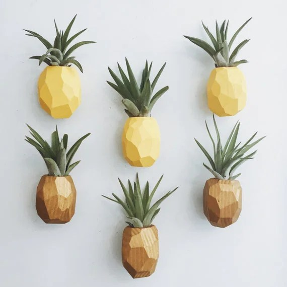 Pineapple Air Plant Magnet w\/Air Plant - information form template word