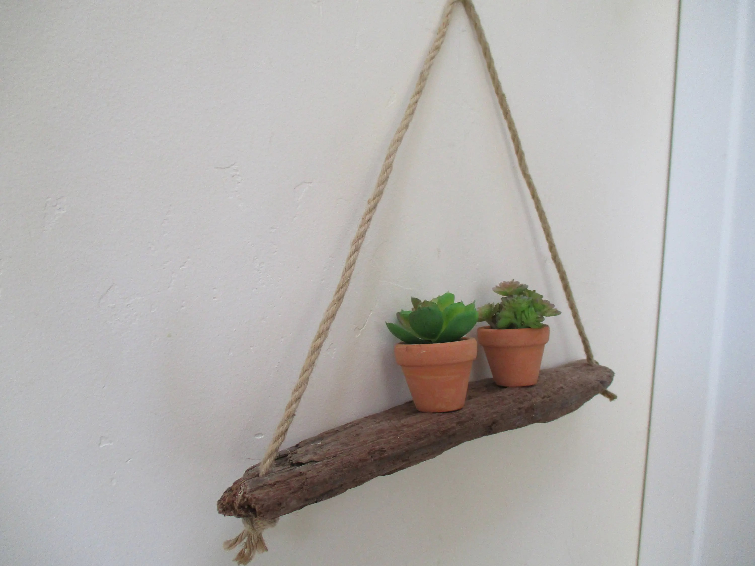 Air Plant Wall Holder Free Shipping Driftwood Shelf Air Plant Succulent Wall