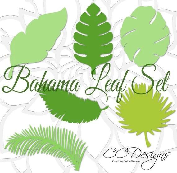 Large Paper Leaf Templates, Tropical Leaf SVG Cut Files, Large Paper - leaf template
