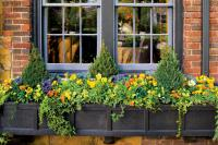 Show-Stopping Autumn Window Box - Fall Container Gardening ...