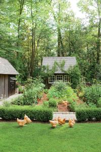 Grow Your Garden Faster With This Secret Weapon - Southern ...