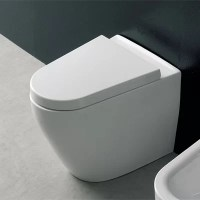 Tizi Floor Mounted Elongated 1 Piece Toilet | Wayfair