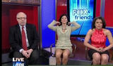 th 38220 vlcsnap 00001 1 122 258lo NOELLE NIKPOUR upskirt   Fox n Friends (May 18, 2009) with Video