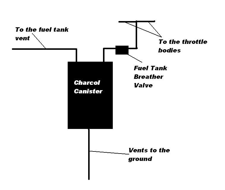 fram fuel filter canister