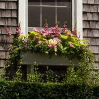 Beautiful Window Boxes on Pinterest | Window Boxes, Fall ...