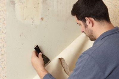 stripping wallpaper - DriverLayer Search Engine