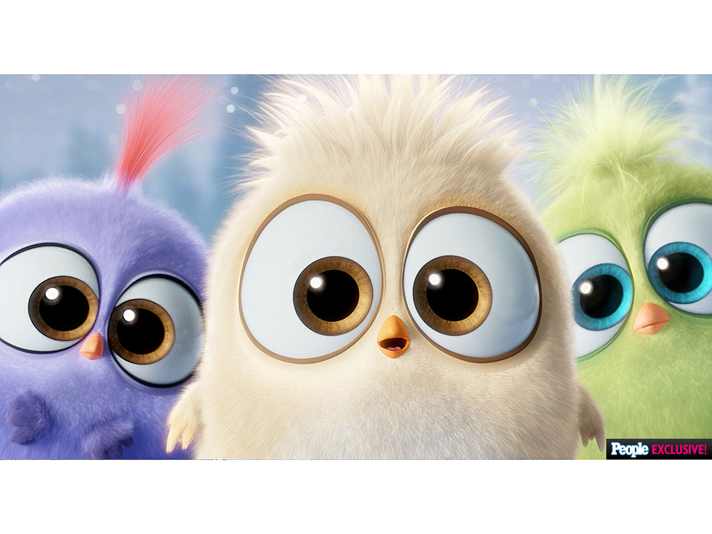 Cute Babies Wallpaper With Tears Angry Birds Movie The Hatchlings Sing Deck The Halls In