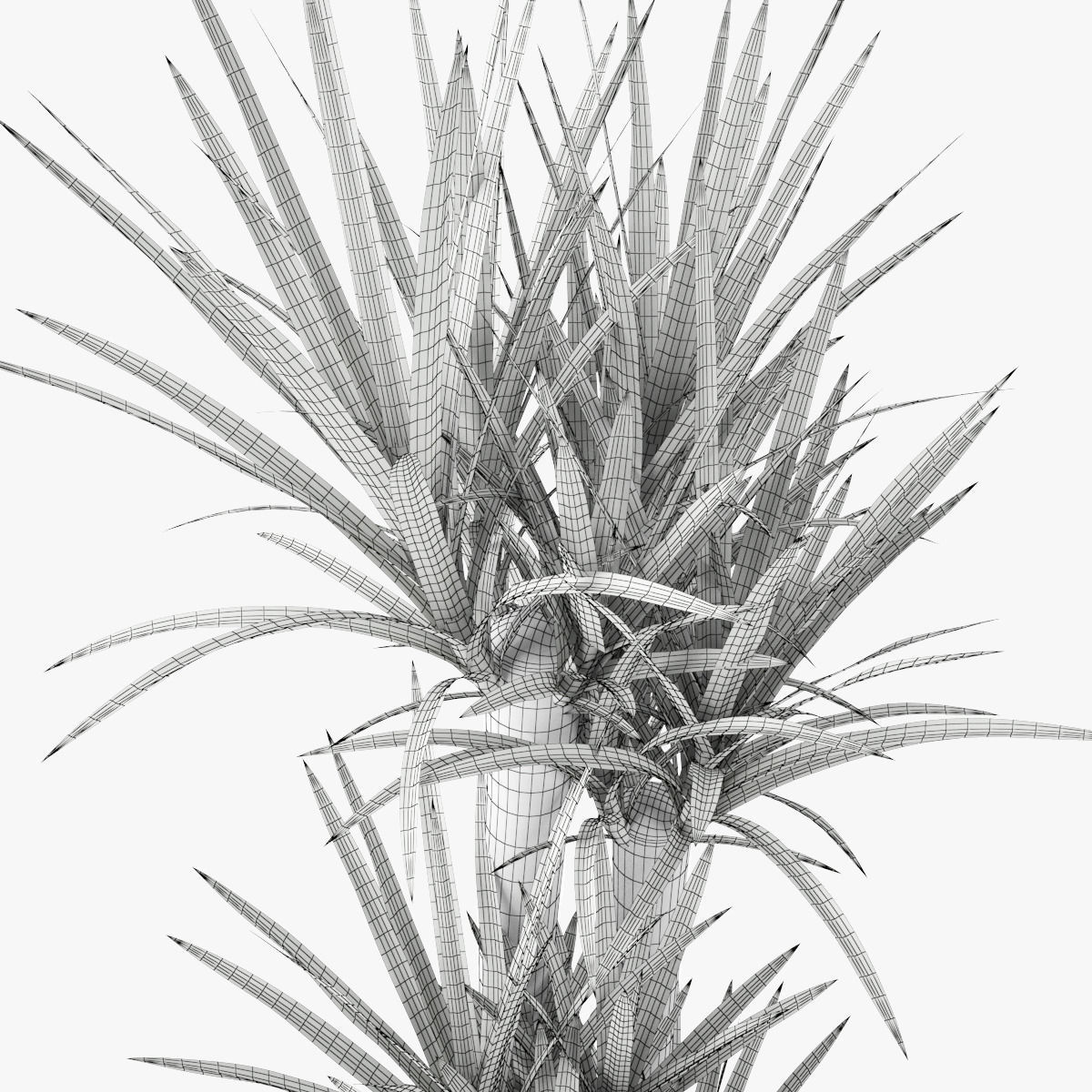 Yucca Elephantipes Yucca Elephantipes Potted Plant Palm Tree 3d Model Max